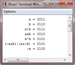 java bitwise operators