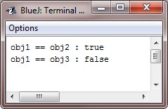 object as parameter in java