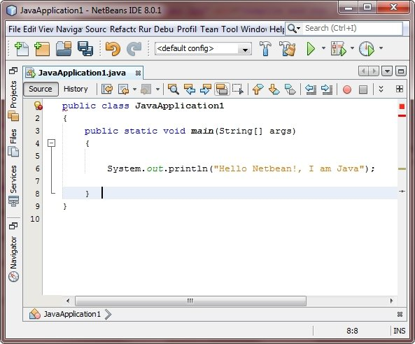 java program using netbean