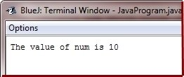 Java Program print integer
